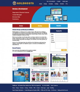 Professional Website Design Ideas