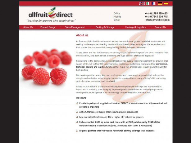 images/615/website-design-all-fruit-direct-2_W.jpg
