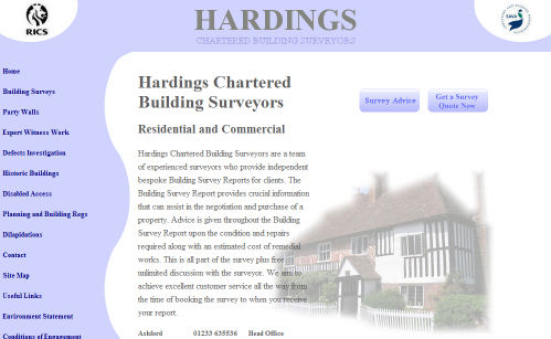 Hadings Surveyors Website Design