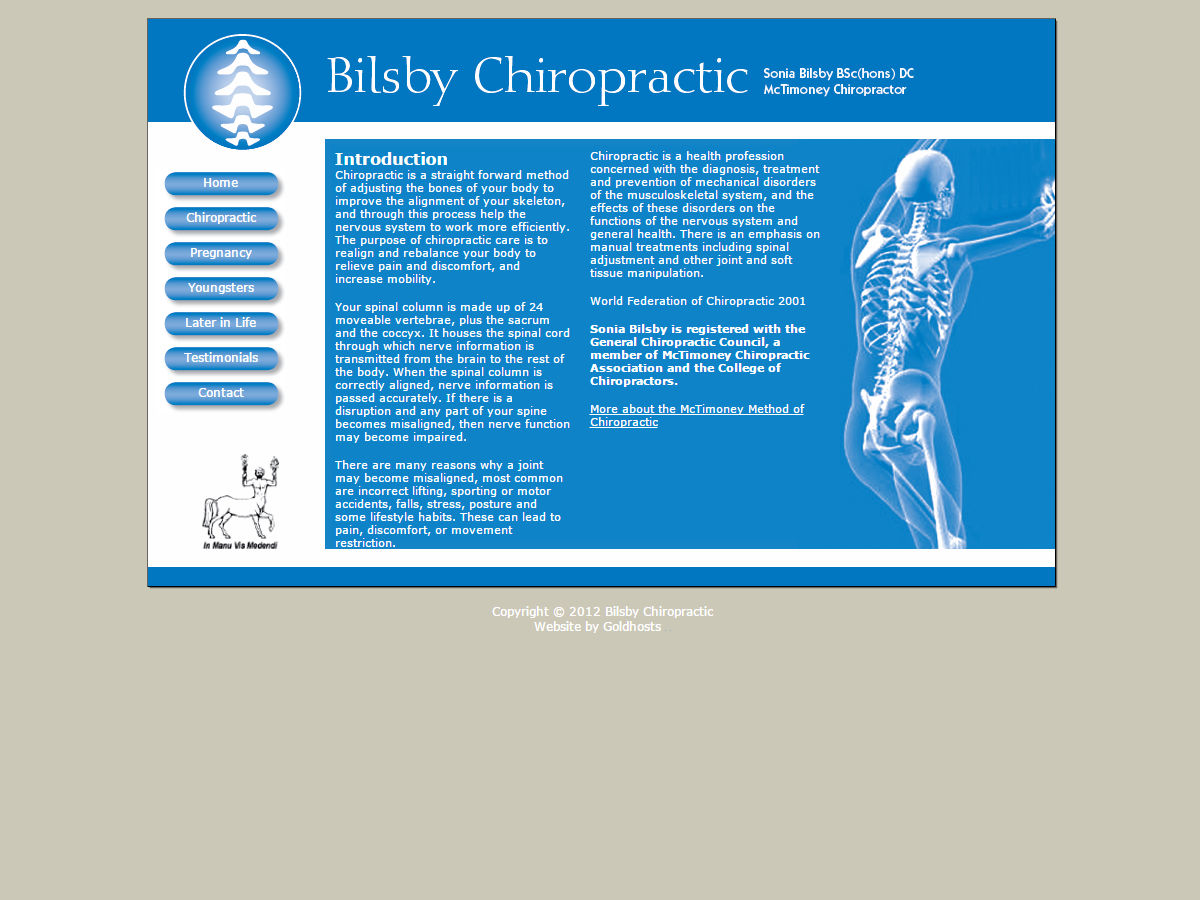 Bilsby Chiropractic Website Design