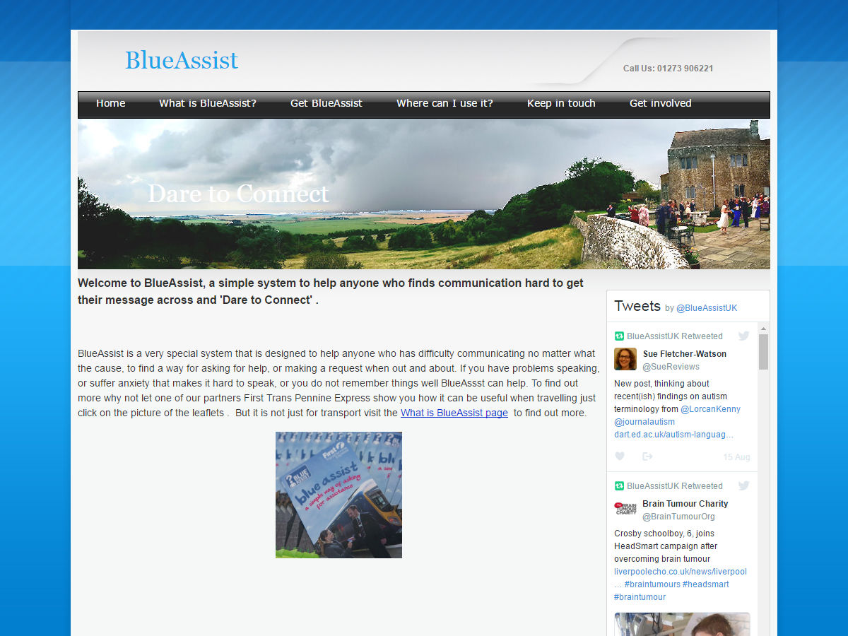Blue Assist Website