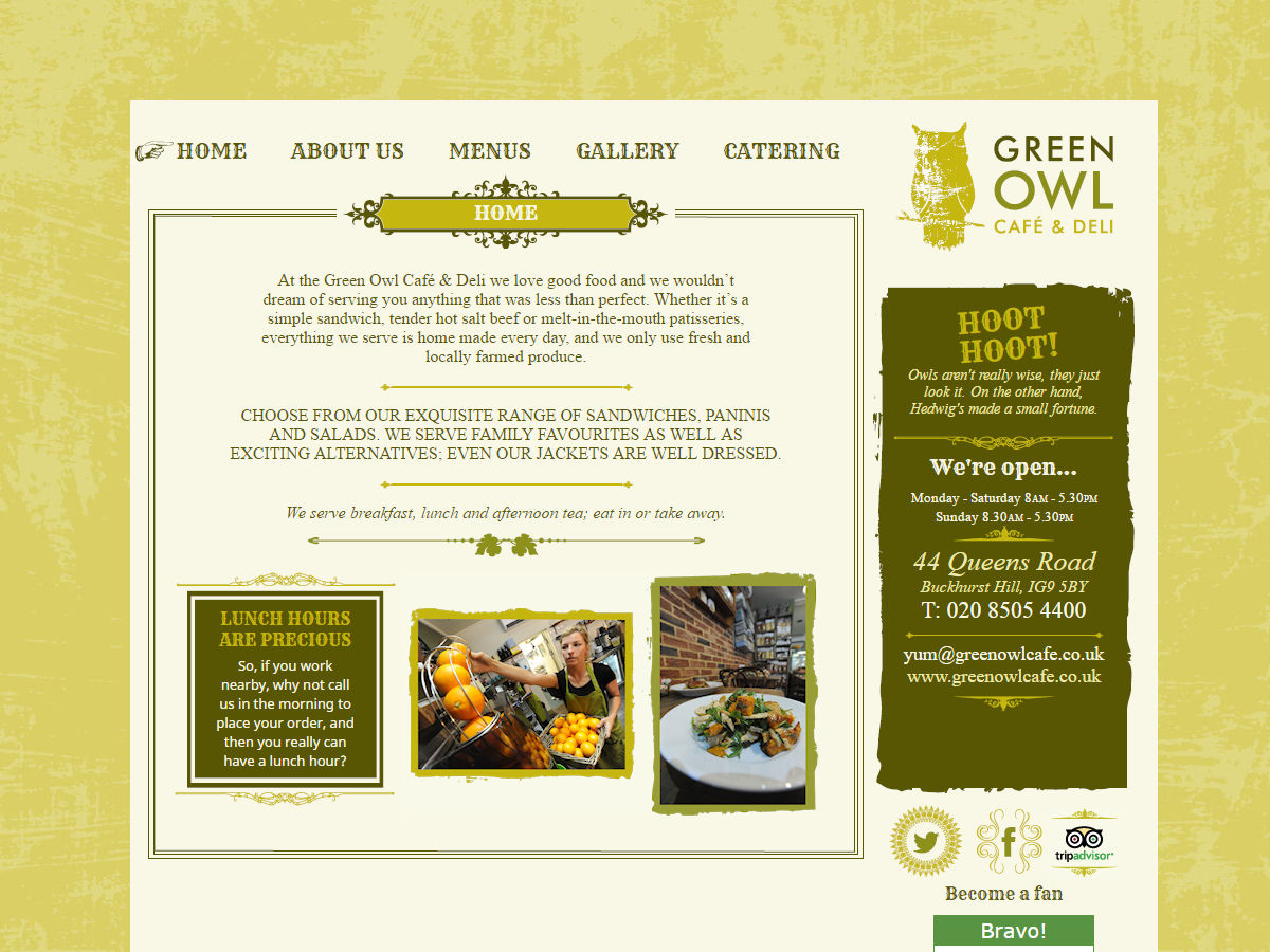 Green Owl Website Design
