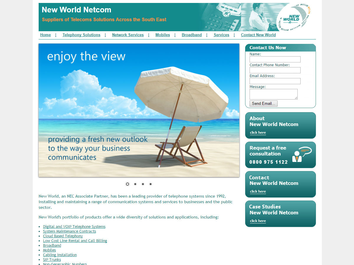 New World Net Com Website Design
